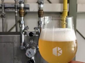 京都与謝野産ホップを使用した京都醸造のビール「与謝野の挑戦」販売開始