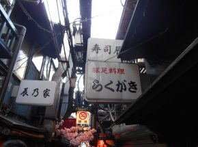 2gifuya_DSCN0096