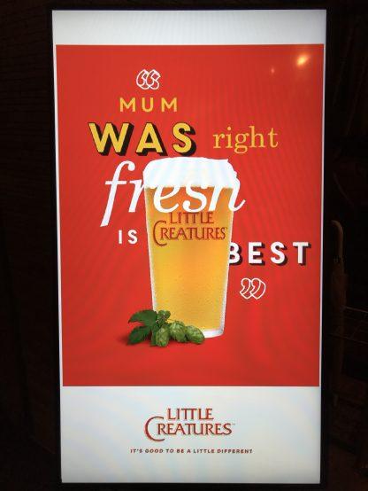 リトルクリーチャーズのイメージカラーは赤、そして「フレッシュ」がキーワード