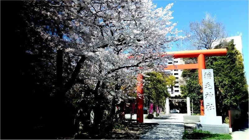 ≪イベント中止決定≫世界健康祈願・春の振舞酒祭り~参拝したら1杯無料~3月29日(日)東海道BEER... 画像