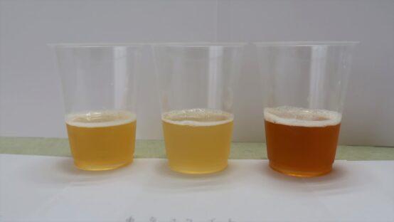 ビールの色